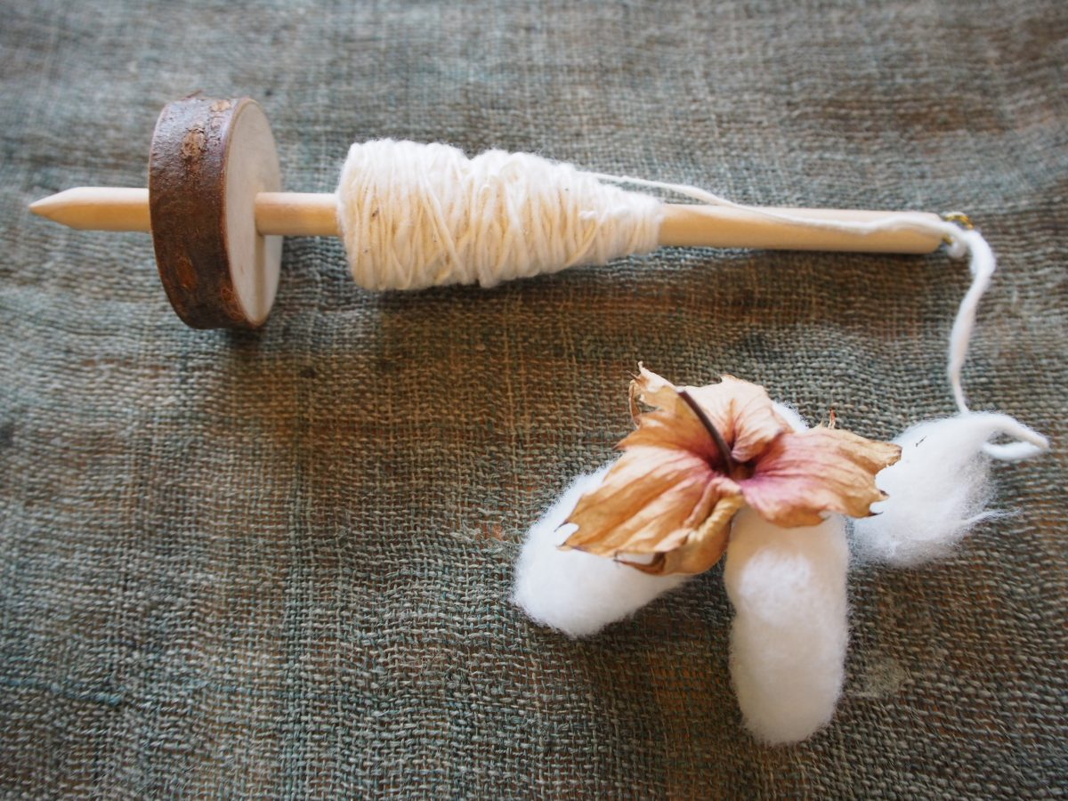 9月 「あまがえる de 糸紡ぎ」ワークショップのお知らせ