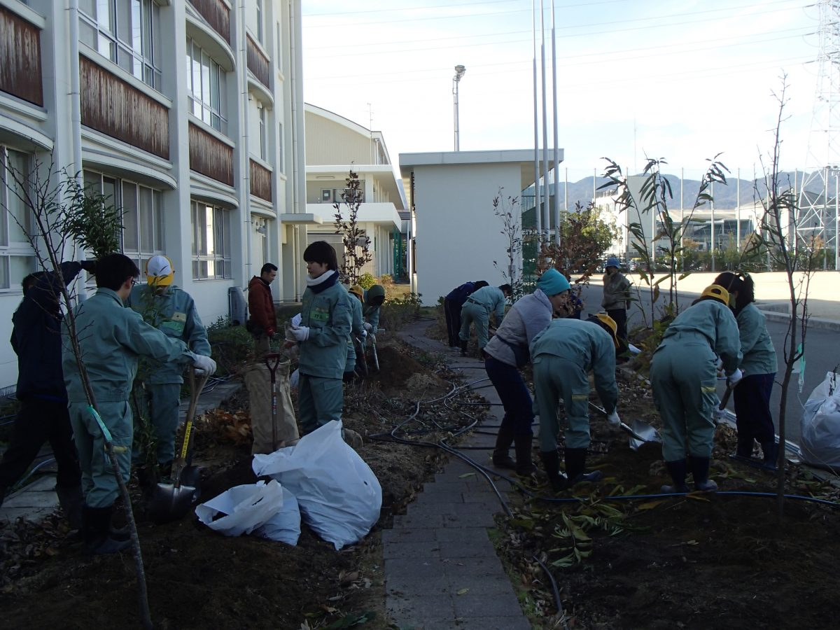 学校の緑を作ろう!(3っつの意味!)