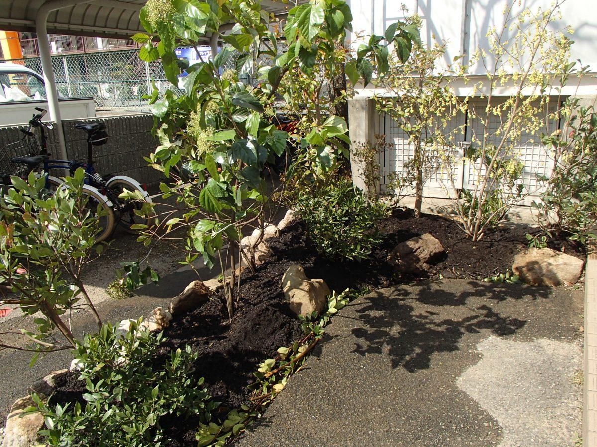 水が浸透する場所としての植栽