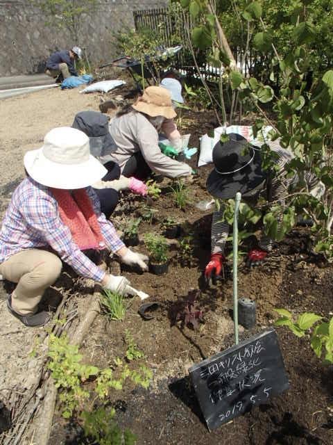 三田キリスト教会の皆さんとの緑の活動(県のまちなみ緑化事業)